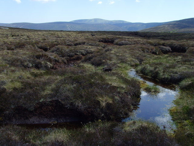 Nancy_blanket bog forest of birse